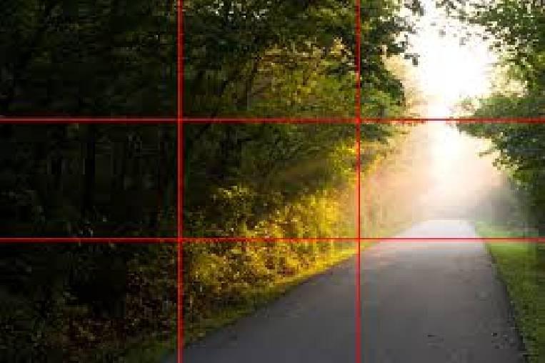 grid on camera screen