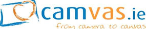 www.camvas.ie logo