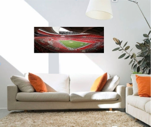 40 x 16 panoramic photo canvas