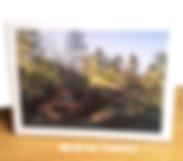 Modern photo canvas