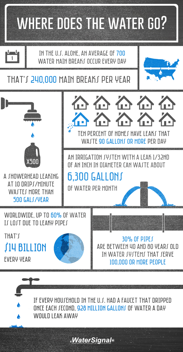 Water Leak Infographic