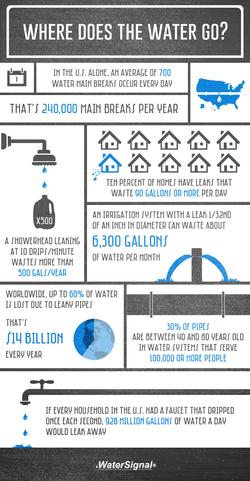 Water Leak Infographic