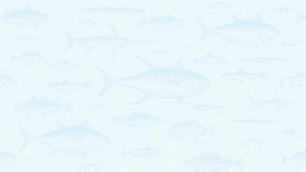 FishPattern2FN.jpg