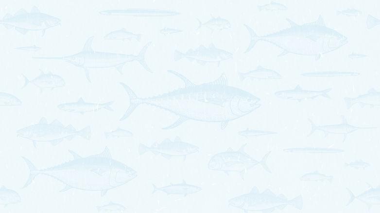 FishPatternFN.jpg