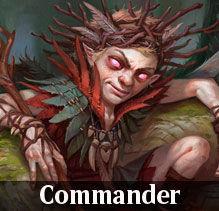 commander2.jpg
