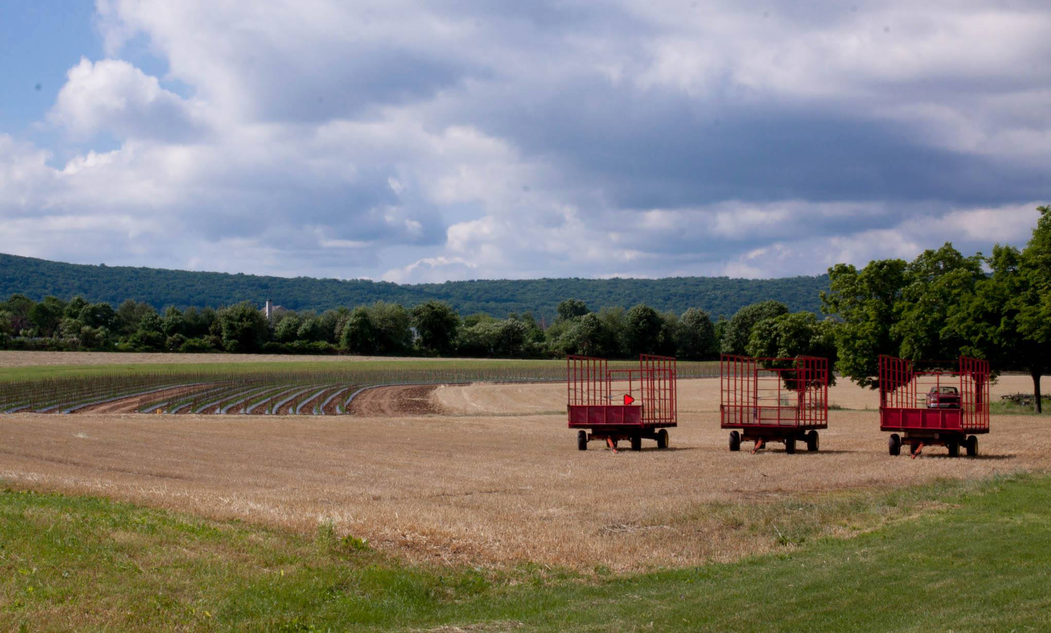 Hay Wagons - Donaldson's Farms