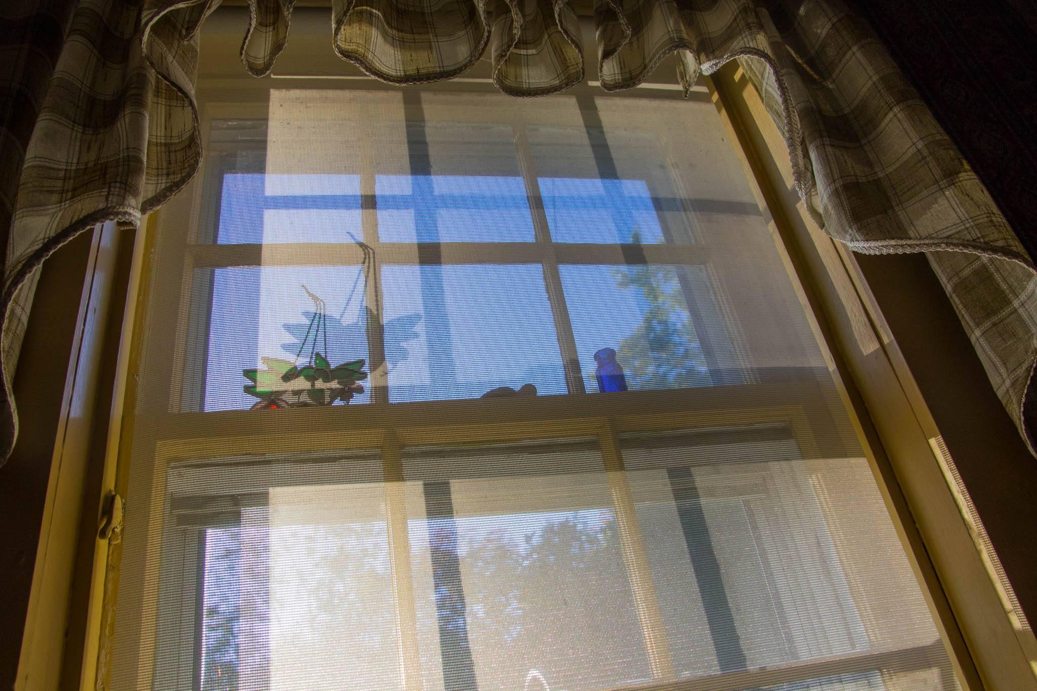 WindowSummer