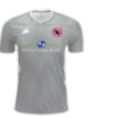 Light Grey Kit Fifth Third.png