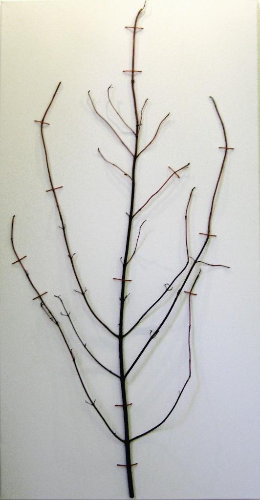 Ommeltu oksa 2009 (65cmx30cm)