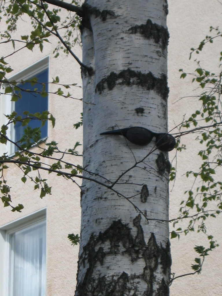 2009 Mustat lasit