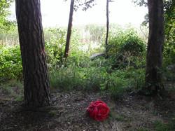 2005 Punaiset t-paidat ripustus