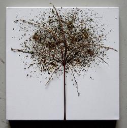 Lehtiruoti ja mursk 2008 (40cmx40cm)