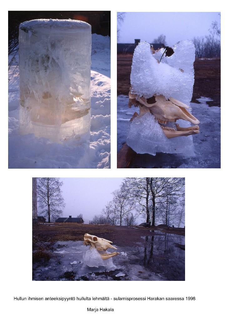 1998 Jäälehmä