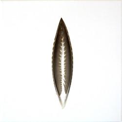 Sulkapari 2014 (20cmx20cm)