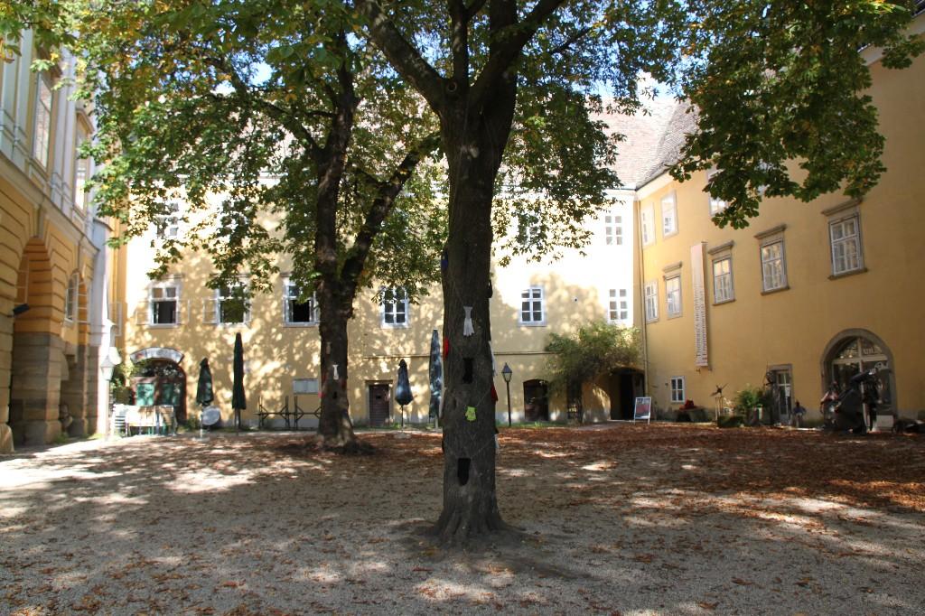 2010 Wolkersdorf kastanja