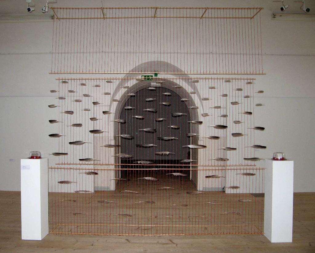Unelma asunnosta -näyttely 2007