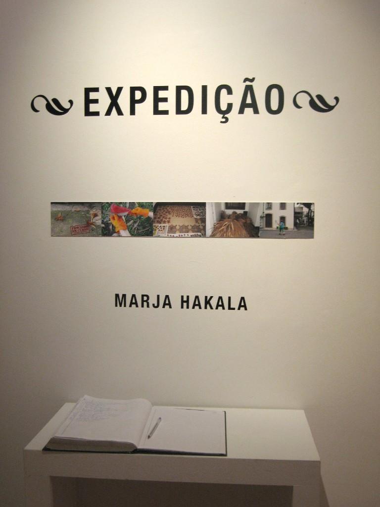 Rio näyttely 2008