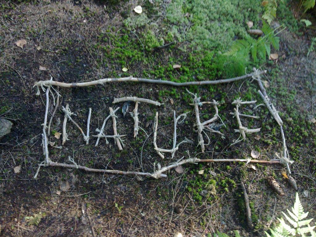 2013 Nature