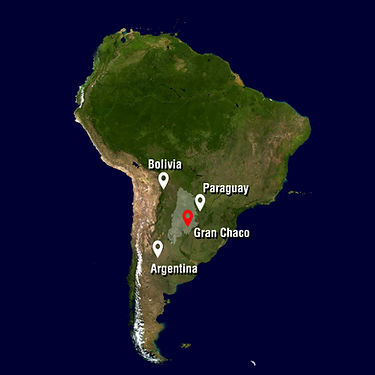 Gran Chaco Americano.jpg