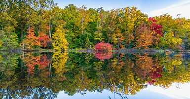 Watchung reservation 3.jpg