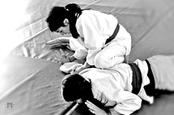 kata_ude_gatame-arm_hold_down