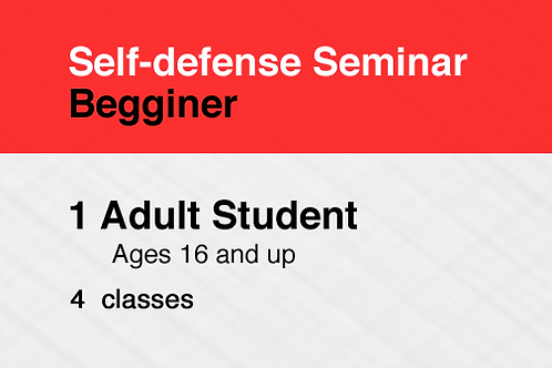 Self-defense Seminar, Beginner