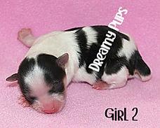 girl2IMG_9778.jpg
