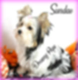 sundaeIMG_4155.jpg