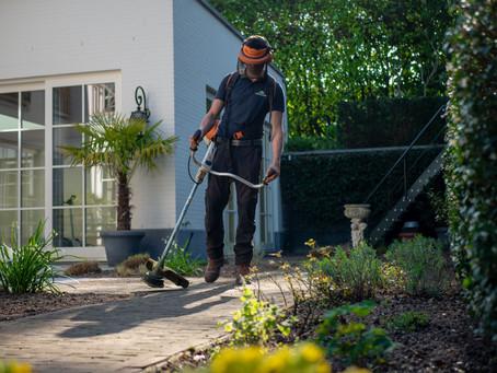 Yazlığınızın Bahçe Bakımı İçin İpuçları