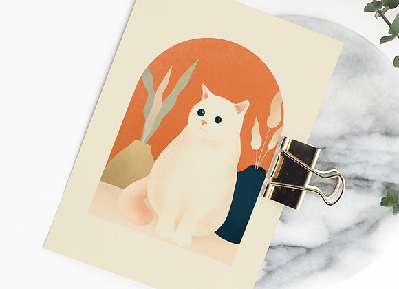Postkaart: kat (incl omslag)