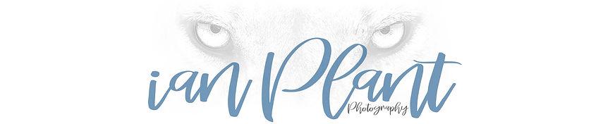 Ian-Plant-lion-logo-white.jpg