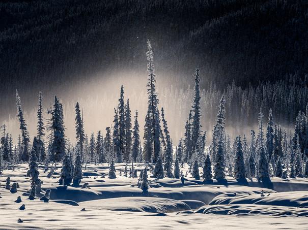 Winter-wonderland,-Banff-National-Park,-Alberta,-Canada.jpg