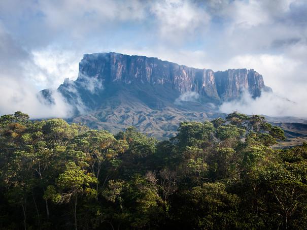 Kukenan-Tepui-emerges-from-the-mist,-Canaima-National-Park,-Venezuela.jpg