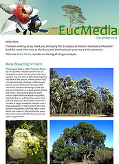 EucMedia_1stEd_Dec2013-1.jpg