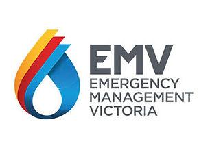 9. EMV Logo.jpg