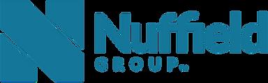 NG Logo Horizontal.png