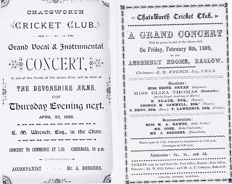 chatsworth cricket concert.jpg