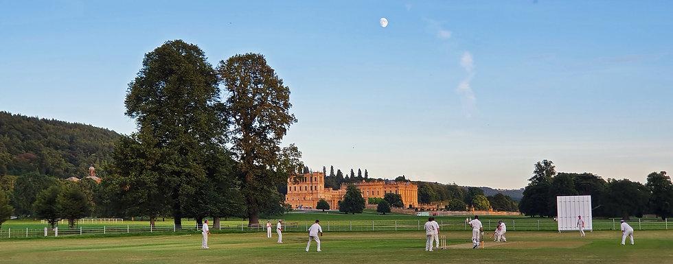 Evening Cricket August 2020