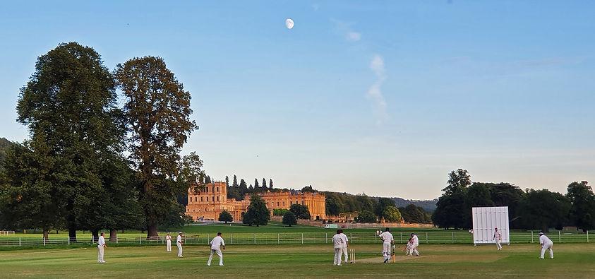 cricket%20august%20%202020_edited.jpg