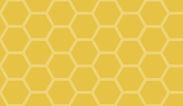yellow bg.jpg
