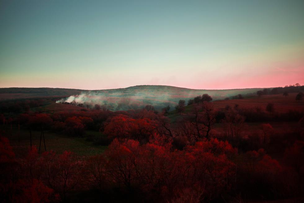 Volcano Fields