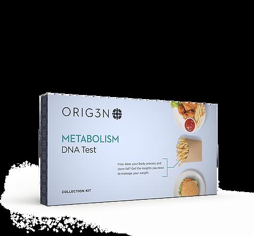 METABOLISM-DNA