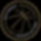 NBPA_PRIMARY_METGOLD_PNG.png