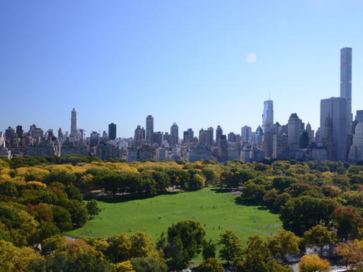 Central Park: An American Work of Art