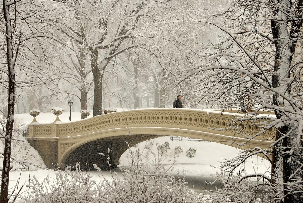 Bow Bridge - Central Park
