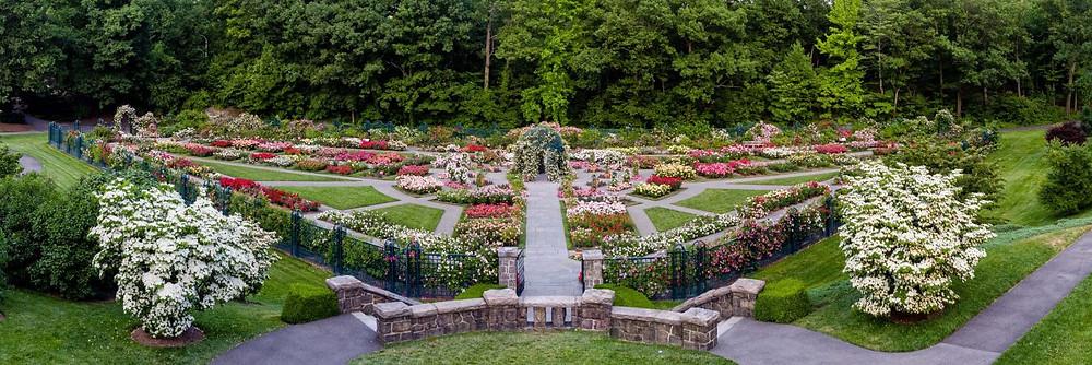 The Peggy Rockefeller Rose Garden, New York Botanical Garden, Bronx