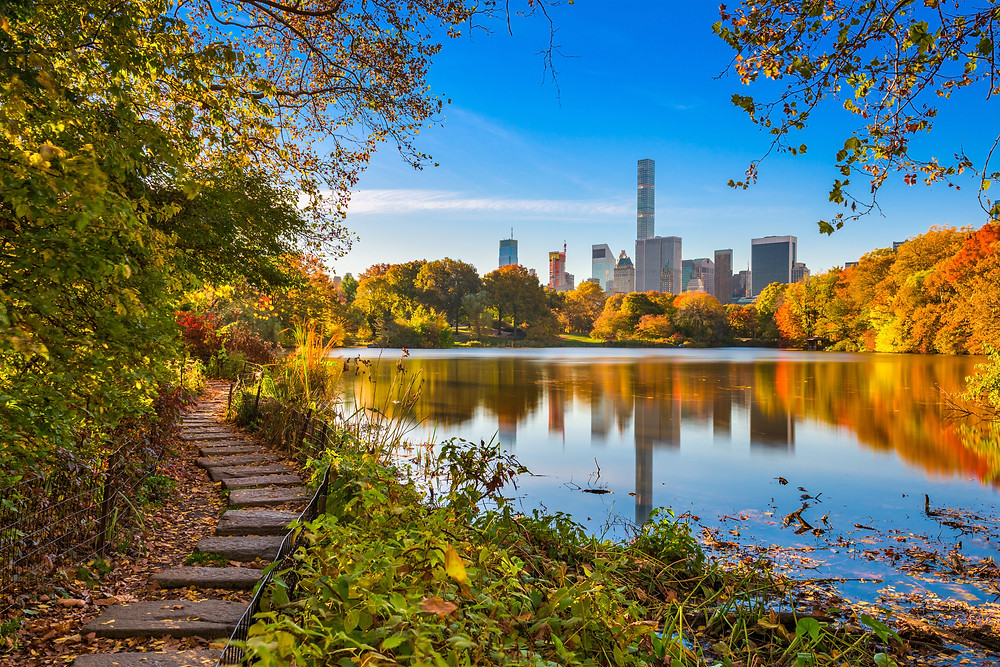 Central Park - NYC - New York