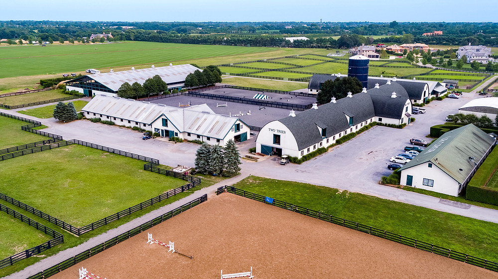 Two Trees Equestrian Estate - The Hamptons - aerial view