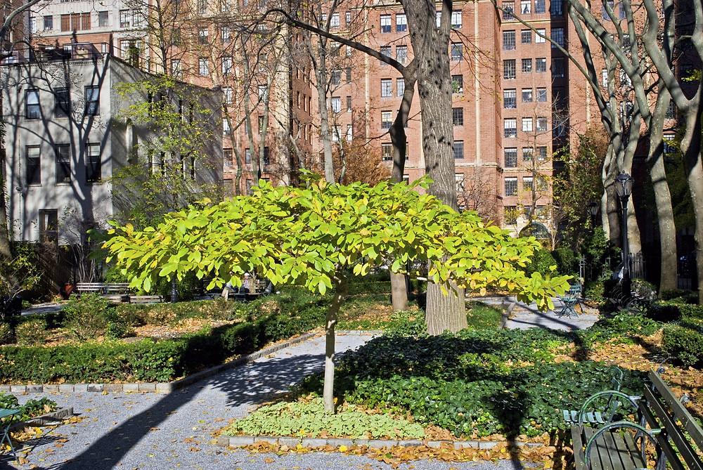 Tudor City Greens, Manhattan, 42nd Street and First Avenue