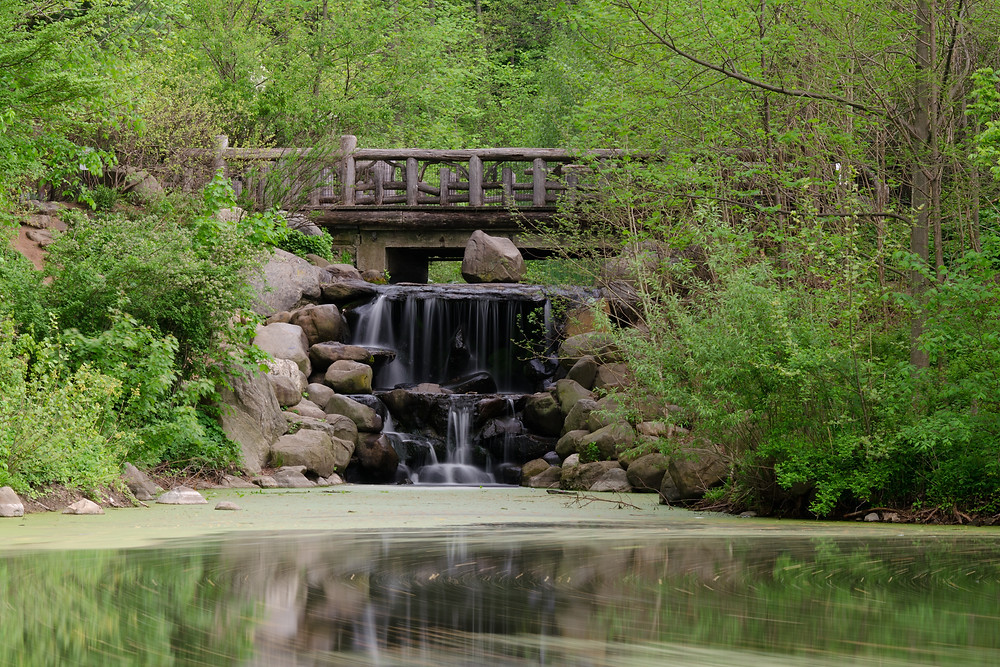 The Ravine, forest, Prospect Park, Brooklyn